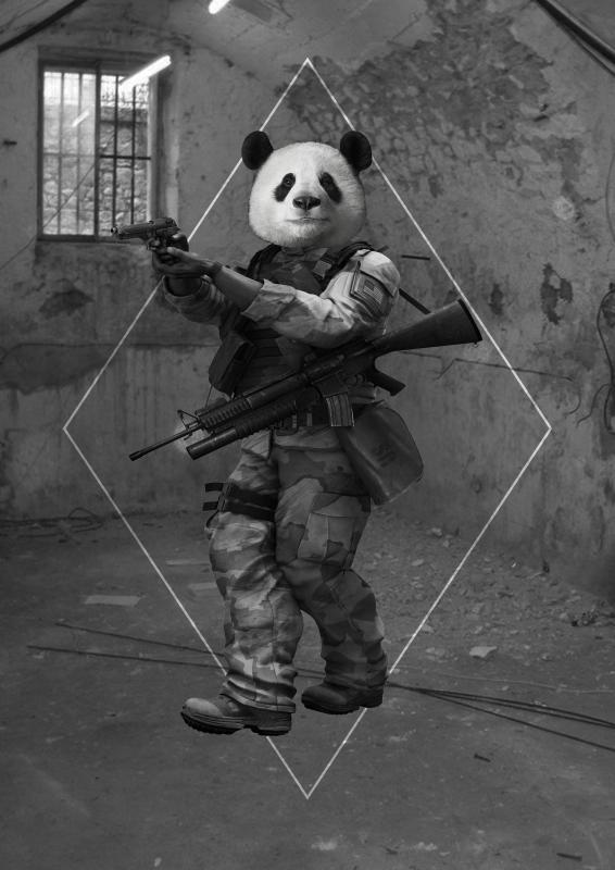 Panda_ok