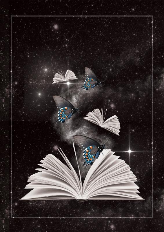 livres_et_papillons